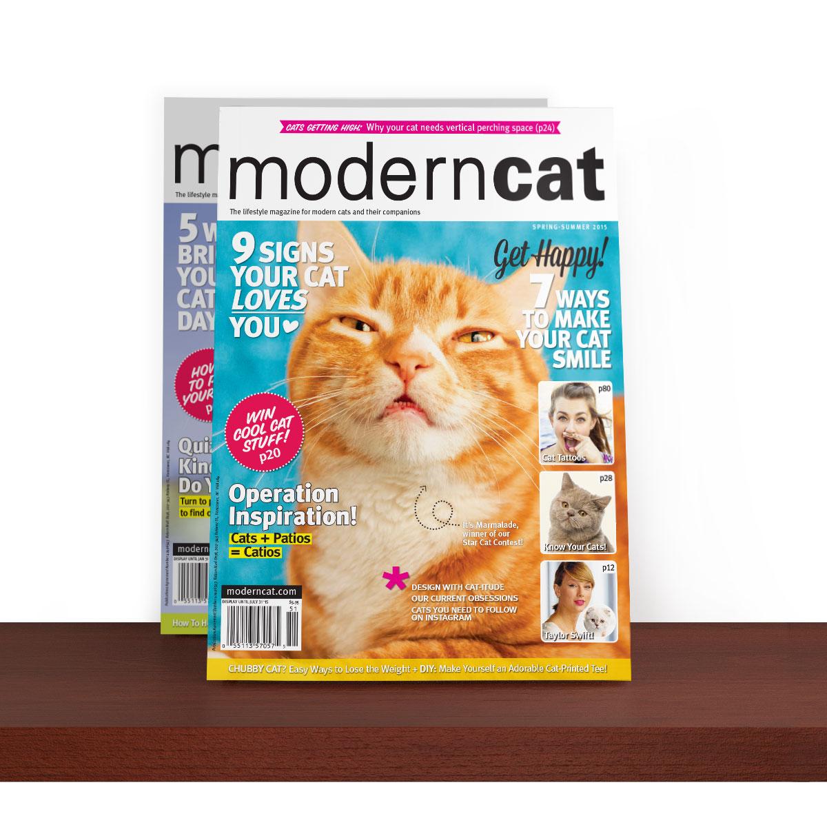 Moderncat com